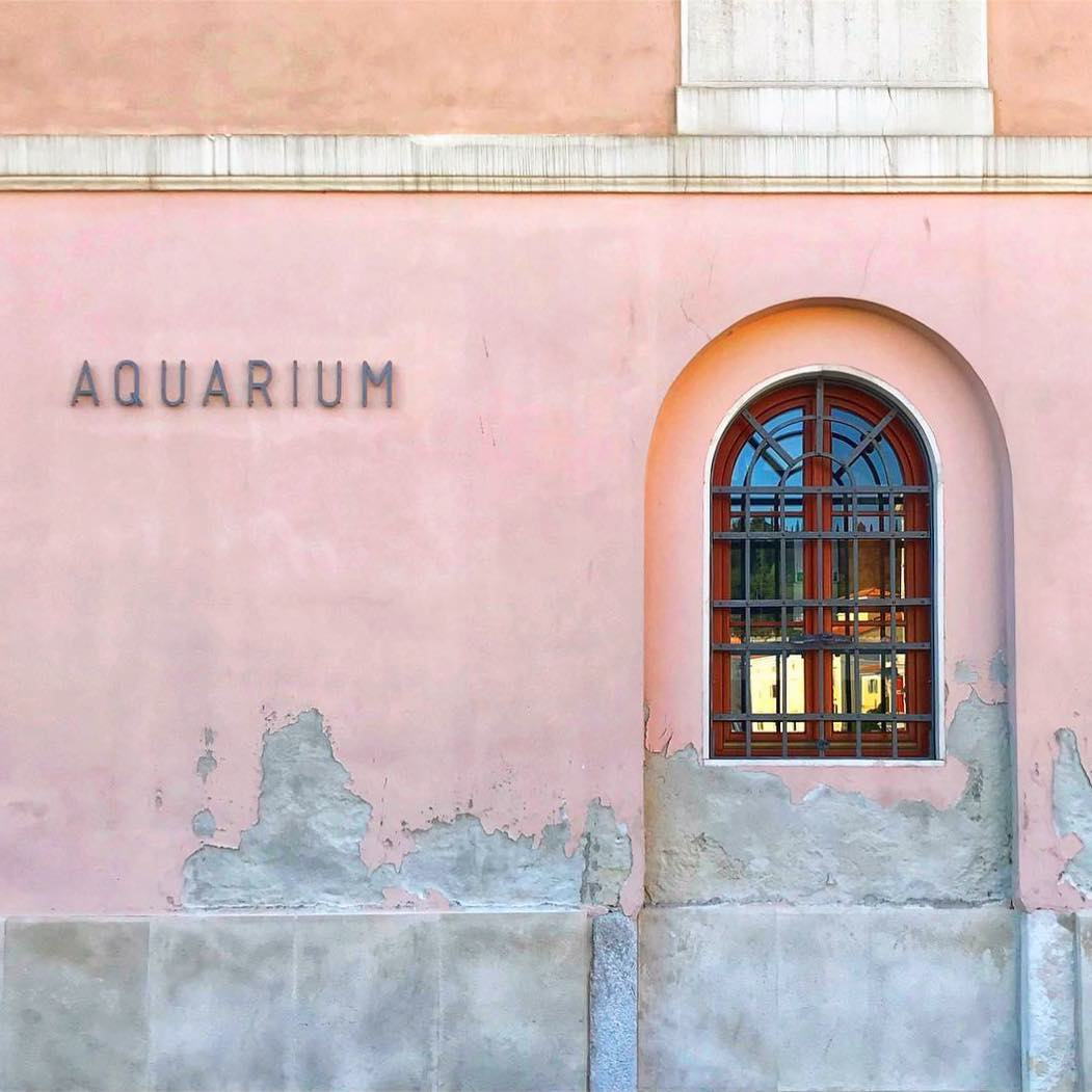 Accidentally Wes Anderson - Piran Aquarium